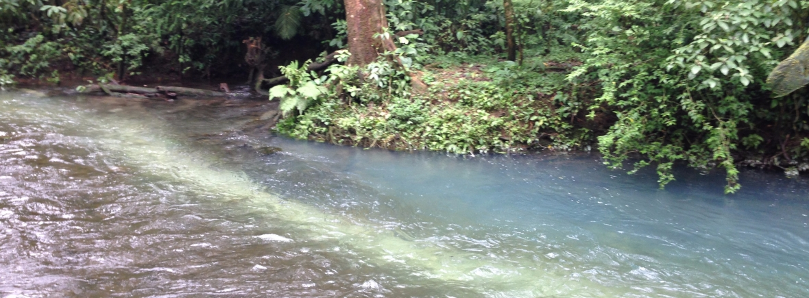 Costa Rican River Picture